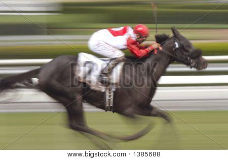 Solo caballo y jinete 2 desenfoque de movimiento