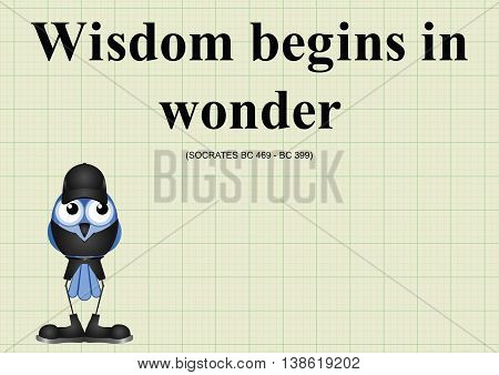 Wisdom begins in wonder ancient Greek quotation relating to the ongoing quest for knowledge through education on graph paper background with copy space for own text