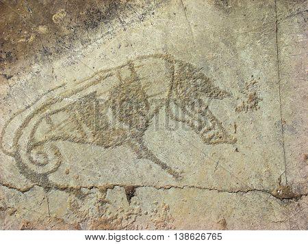 Stone with animal petroglyphs. Siberian Altai Mountains petroglyphs Russia