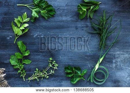 Fresh Herbs Frame On Dark Background, Top View