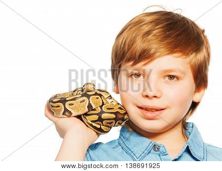 Close-up portrait of  blond young boy holding Ball python on his hand, isolated on white background