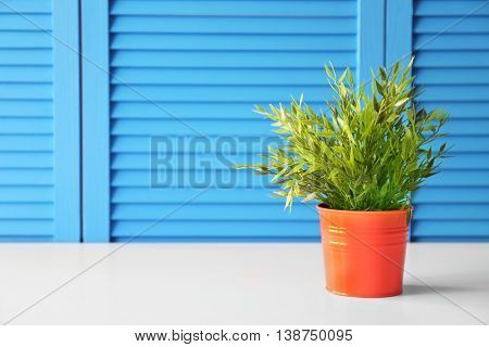 Green plant on blue folding screen background