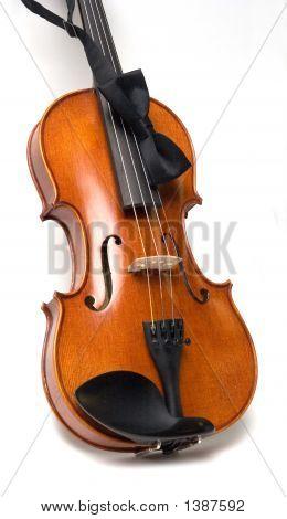 Violin Gig