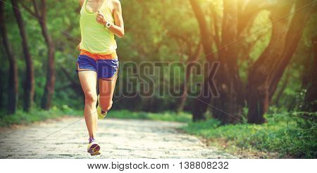 young fitness woman trail runner legs running in forest