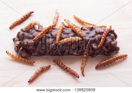 Fried Insects - Wood Worm, Bamboo Worm Insect Crispy And Candy Coated Chocolate Wafer Bars On Wooden