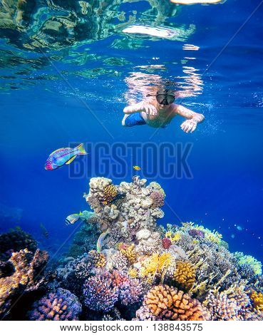 Underwater Shoot Of A Young Boy Snorkeling In Red Sea