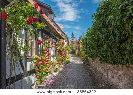 Medieval alley in the historic Hanse town Visby on Swedish Baltic sea island Gotland