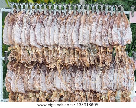 Dried squid for grilled squid in row