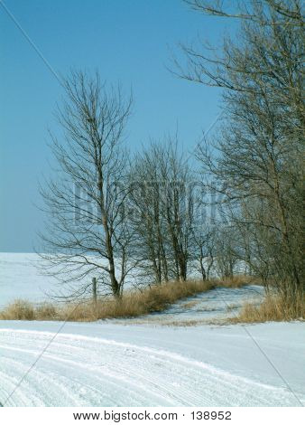 Snow-covered Country Back Road
