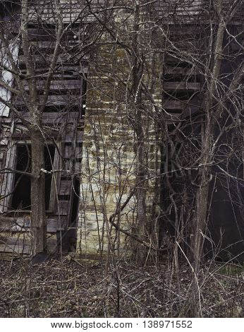 Chimney of abandoned house in Appalachia with overgrown vines, Chilhowie, Virginia