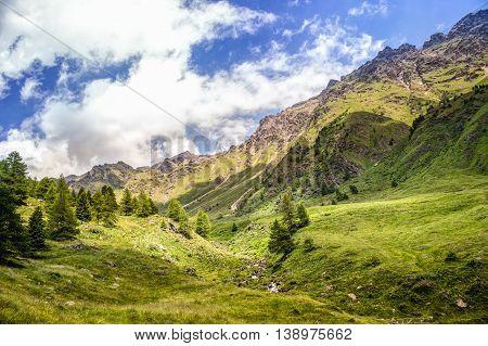 Amazing Mountain View In A Sunny Summer Day (ponte Di Legno, Valle Di Viso - Italy)