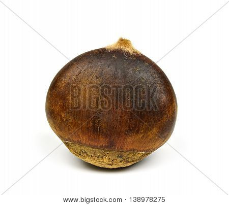 Chinese chestnut isolated on a white Background