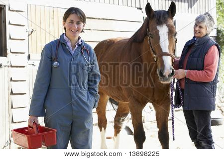 Vet In Discussion With Horse Owner poster