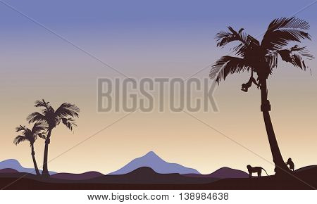 Silhouette of monkey and palm landscape illustration