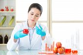 Researcher and microscope with a GMO apple in laboratory poster
