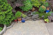 Backyard garden landscaping with paver bricks patio hardscape trees potted plants shrubs pond rocks and decor poster
