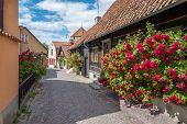 Medieval alley in the historic Hanse town Visby on Swedish Baltic sea island Gotland poster