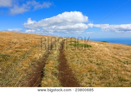 Path On Mountain Field