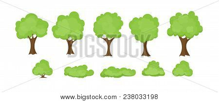 Vector Illustration Set Of Abstract Stylized Trees On White Background. Trees And Bushes Collection