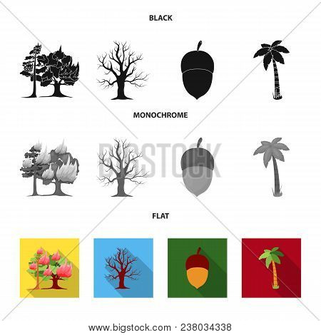 Burning Tree, Palm, Acorn, Dry Tree.forest Set Collection Icons In Black, Flat, Monochrome Style Vec
