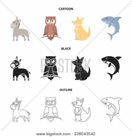 Donkey, Owl, Kangaroo, Shark.animal Set Collection Icons In Cartoon, Black, Outline Style Vector Sym