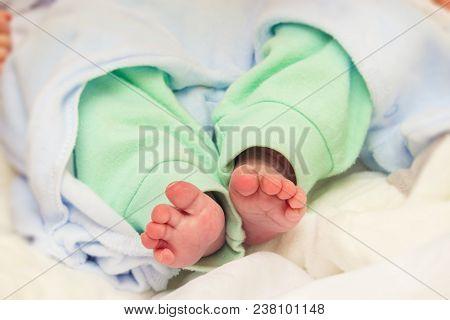 Little Legs Of A Newborn Baby Closeup