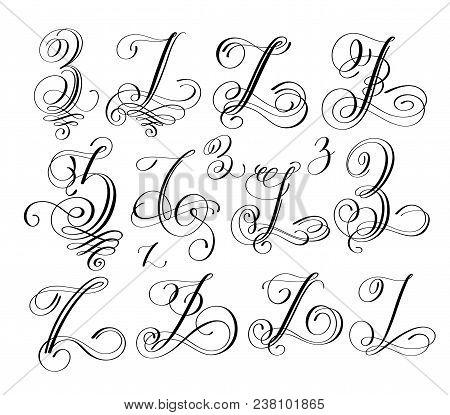 Calligraphy Lettering Script Font Z Set Hand Written Signature Letter Design Vector Illustration