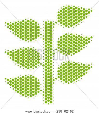 Halftone Hexagon Flora Plant Icon. Pictogram On A White Background. Vector Mosaic Of Flora Plant Ico