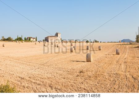 Santa Margalida, Mallorca, Spain - Traditional Farming On Cultivated Areas Near Santa Margalida
