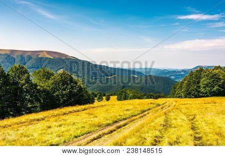 Countryside Road Through Grassy Hill. Rural Transportation Concept. Lovely Summer Landscape In Carpa