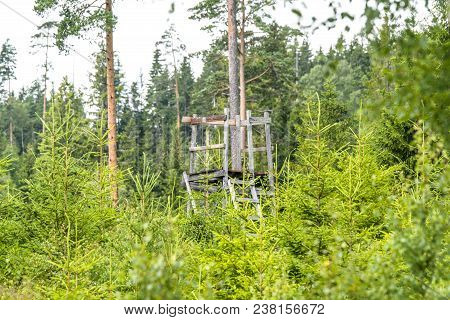 Old Wooden Hunting Tower In A Forest In The Summer Surrounded By Pine Tree Tops