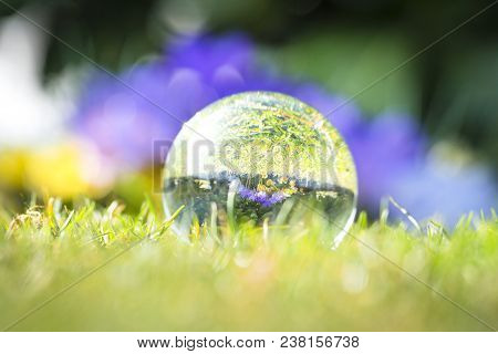 Large Droplet On Green Grass With A Reflection Of Colorful Spring Flowers