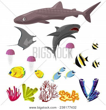 Vector Collection Of Inhabitants And Objects Of Sea Fauna Isolated On A White Background