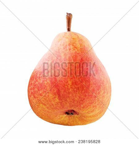 Isolated Fruits. One Whole Sweet Pear Fruit Isolated On White Background With Clipping Path As Packa
