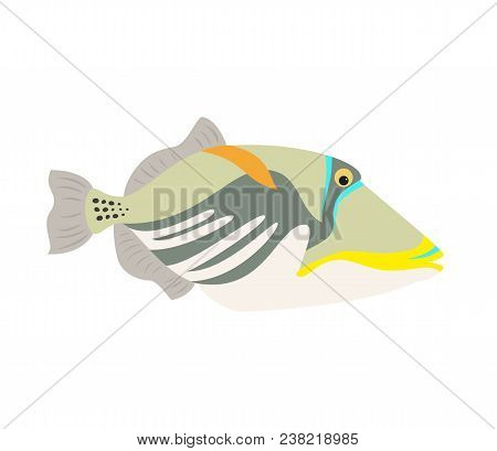 Picasso Triggerfish Fish Icon On White Background. Vector Illustration.