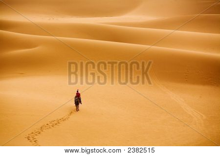 Wüste marschieren