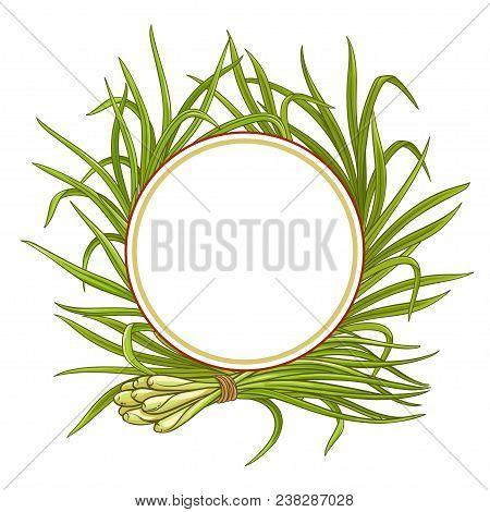 Lemongrass  Plant Vector Frame On White Background