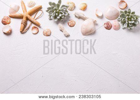 Summer Background. Marine  Decorations On White Textured  Background. Sea Star, Shells, Coral, Succu