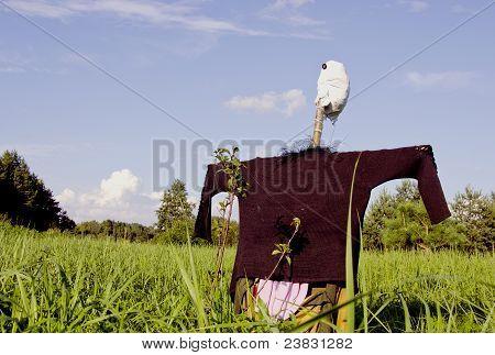 Jackstraw In The Summer Field