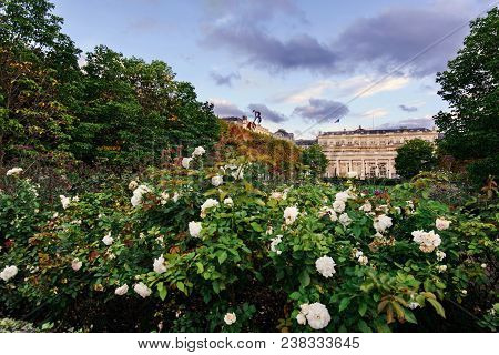 Paris, France - August 8, 2017. Royal Palace, Also Known As Palais-cardinal With Blooming Roses In F
