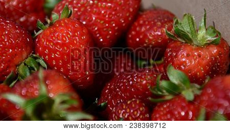 Freshly Picked Red Strawberries. Group Of Strawberry Or Stack Of Strawberries Concept. Fresh Harvest