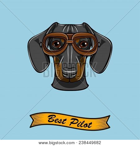 Dachshund Dog Pilot. Aviators Glasses. Best Pilot Inscription. Cute Dog Portrait. Vector Illustratio