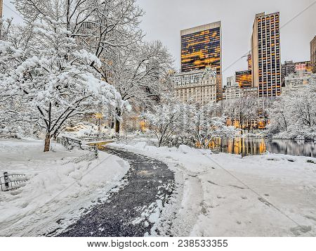 Central Park, New York City During Winter Snow Storm