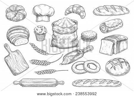 Bread Isolated Sketch Set Of Bakery And Pastry Shop Food. Bread, Croissant And Baguette, Bun, Cupcak