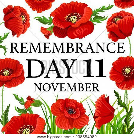 11 November Poppy Day Greeting Card For Remembrance Day In Commonwealth. Vector Red Poppy Flowers Fo