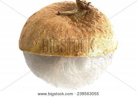 Single Piece Dimocarpus Longan Fruit With Sheel Half Peel Showing Translucent Flesh Isolated On Whit
