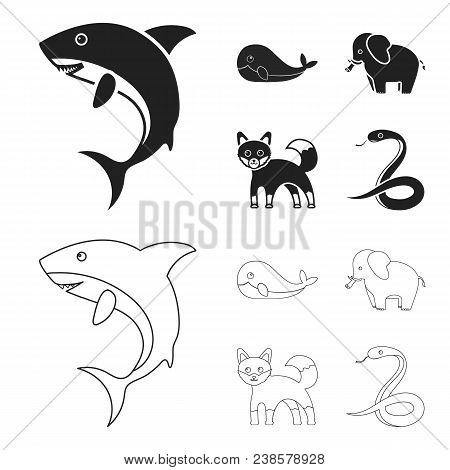 Whale, Elephant, Snake, Fox.animal Set Collection Icons In Black, Outline Style Vector Symbol Stock