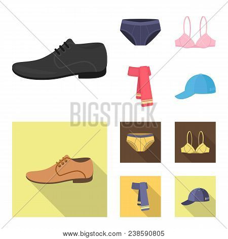 Male Shoes, Bra, Panties, Scarf, Leather. Clothing Set Collection Icons In Cartoon, Flat Style Vecto