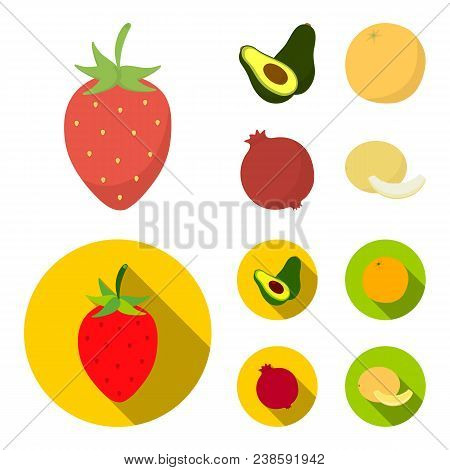 Strawberry, Berry, Avocado, Orange, Pomegranate.fruits Set Collection Icons In Cartoon, Flat Style V