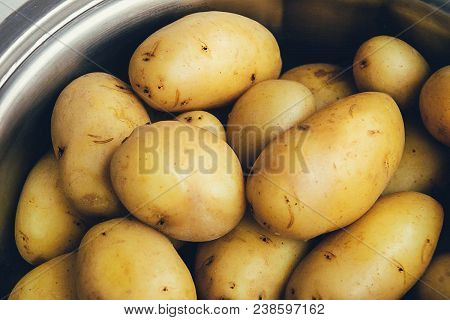 Crop. Agriculture. Young Potato Close Up. Culture, Farm